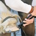 Клещи-молоток для подковки лошадей (кузовных работ) Knipex KN-5500300